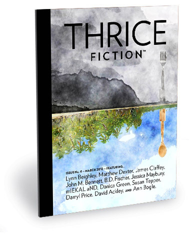 Thrice Fiction Magazine No. 4