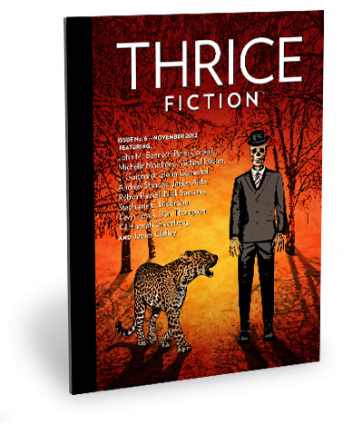 Thrice Fiction Magazine No. 6