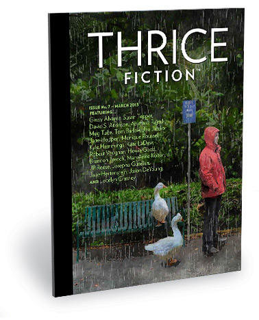 Thrice Fiction Magazine No. 5