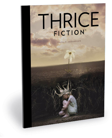 Thrice Fiction Magazine No. 9