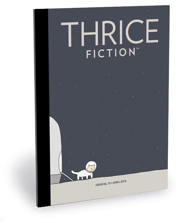 Thrice Fiction Magazine No. 10