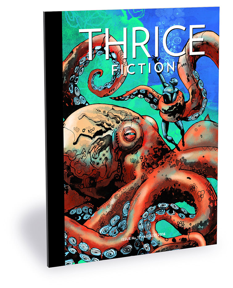Thrice Fiction Magazine No. 17